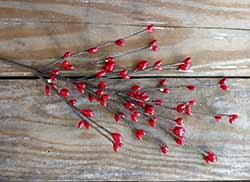 Red Bean & Pip Berry Pick