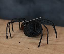 Glittered Spider - Black