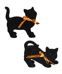 Black Cat Magic (Set of 2)