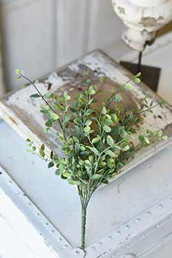 Seraph Vine 14 inch Bush