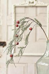 Cantata Pine & Bell Hanging Spray