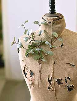 Crisp Air Eucalyptus Pick