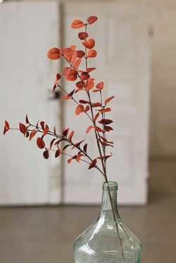Red Penny Leaf Floral Spray